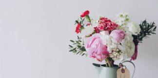 bukiet różnokolorowych kwiatów